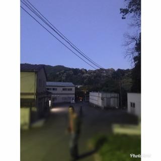 萬願寺1.JPG