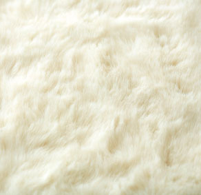 aw-cc-carpet-hl1240-05up.jpg